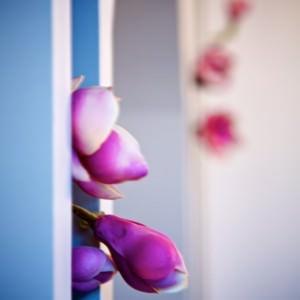 Luminaires et décoration florale du cabinet d'orthodontie du Dr Ohana-Chpindel